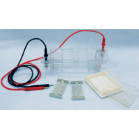 Horizontal Electrophoresis (Medium: 100 x 70, 50 x 70mm gels)